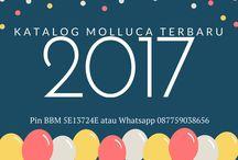 Katalog Molluca Terbaru 2017