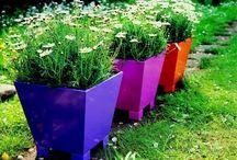 jardim com vasos