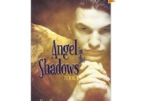 "FREE eBOOK Angel in the Shadows by Lisa Grace  / FREE eBook - Series optioned for movie-get ""Angel in the Shadows"" a teen supernatual.