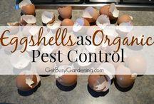 Puutarhanhoitoa / Mikäs sen parempaa stressinhallintaa kuin puutarhanhoito!