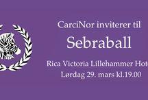 CarciNor landskonferanse