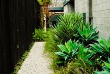 Garden Inspiration / Ideas and inspiration for our garden / by Barb Fisher