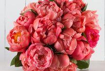 Our online bouquets