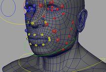 3D Rigging