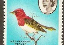 Bechuanaland  Stamps