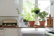 Nest // Kitchen