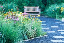Backyard Garden/ Landscape
