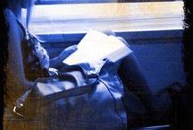 my photo / http://www.flickr.com/photos/cophotoco/  foto di consuelo cocchini tutti i diritti riservati.