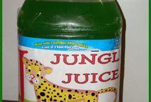 Jungle / by Jennifer Shikle