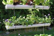 mur de jardinage