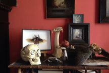Skulls altar  / My House