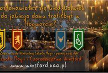 WINSFORD / O Szkole Magii i Czarodziejstwa