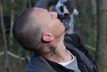 Animals / Foto's van dieren