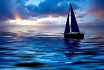 Sailing/Take me away⛵️ / by Michelle Bolin