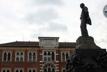 Culture in Milan / Exhibits, museums and historical spots: discover a cultured Milan.