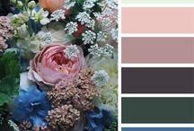 Inspiração em paletas de cores