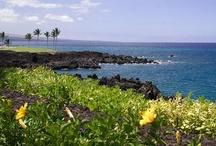 Travel:Waikaloa Hawaii / Things to do in Waikoloa Hawaii