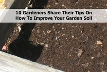 Gardening Tips / Pruning, companion planting, natural weed killers & fertilisers, composting, crop rotation, helpful insects and allsorts of other gardening info...