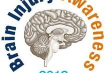 Traumatic Brain Injuries/The Brain