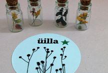 decoration miniature / miniature fleurs séchées decoration