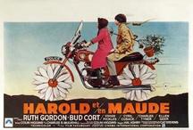 HAROLD + MAUDE / by Molly Stankovsky