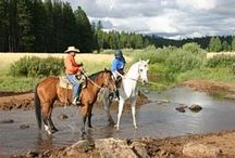 Equestrian Vacations / by Anna Hynes