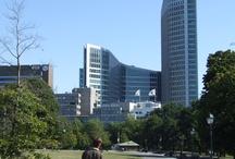 Den Haag / Haag - soudní dvůr