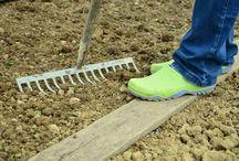 Kezdő Kertész / Kezdő kertészeknek hasznos,könnyen megvalósítható tanácsok,ötletek.