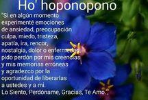 hoponomo
