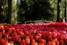 Nice APRIL BEST TRAVEL DESTINATIONS Looking for the perfect spring weekend away Look no