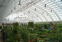 Conventional Greenhouses / Examples of conventional greenhouses and other related structures.