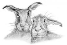 Animal / Wildlife Art / A selection of Animal & Wildlife Artists