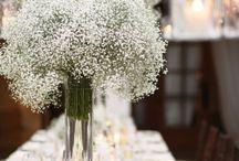 decor/flowers