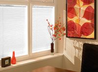 Perfect Fit Blinds / Available in Pleated or Venetian. An Incredibly contemporary blind great for all windows.