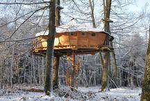 A TREE HOUSE, A FREE HOUSE...