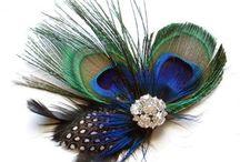 Peacock Costume Ideas