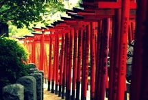 Japan / Japanese nature - culture
