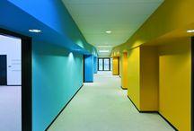 Architecture / Education