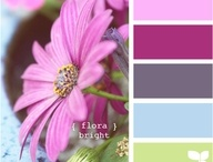 Color Combo / by Melissa Bunch