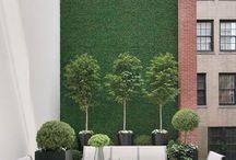 Green Walls / by Emma van Lint
