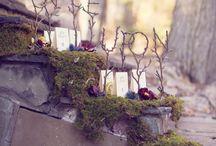 Dark Fairy tale wedding ideas / by Misty Binkerd