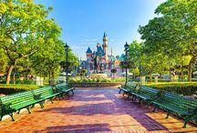 Disneyland / by that one kid