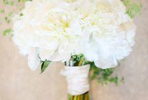 Wedding Photography / by Vanessa Joy