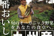 九州産  野菜