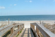 The Best of NC: Carolina Beach, NC / by Shasta Seagle