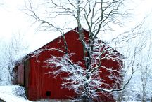 I Love Barns / by Heidi - We Are Loving This Life