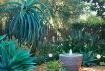 Gardens: Courtyards & Patios / by Janet Mcardle