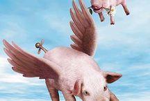 Flying PIGS  / by Heidi Brown