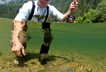 best way to get to brown trout
