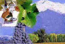Wijnreis op maat / Combineer cultuur, gastronomie, muziek, architectuur met een bezoek aan prachtige wijngebieden en interessante wijnmakers. Laat ons dan een wijnreis op maat voor u samenstellen. Als grote wijnliefhebbers bezochten wij zelf vele streken en regio's en adviseren wij u graag. http://www.hannick.nl/incentives/groepsreizen/resultaat?varkenmerk=70&linkfield=kenmerk_id&midreferrer=3